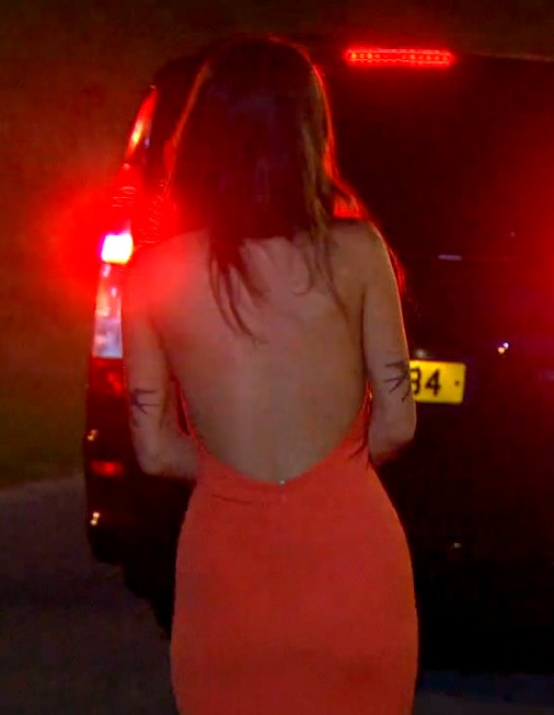 Red Dress Back