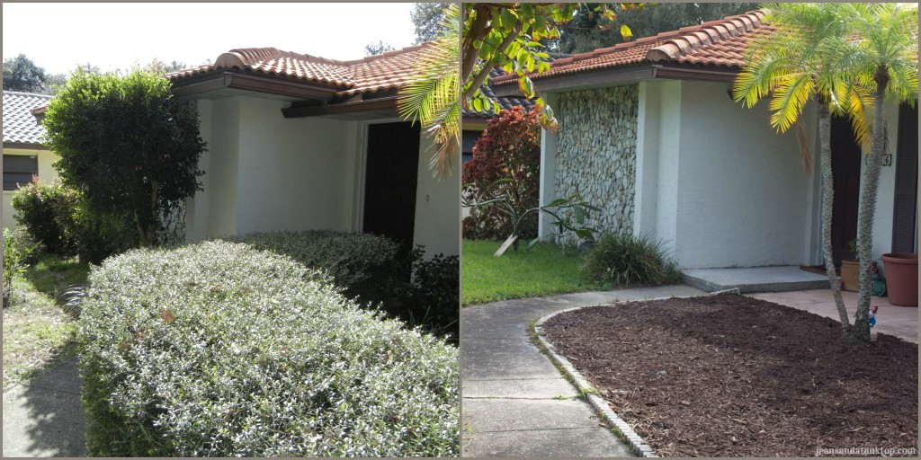 Front Bushes Before and After