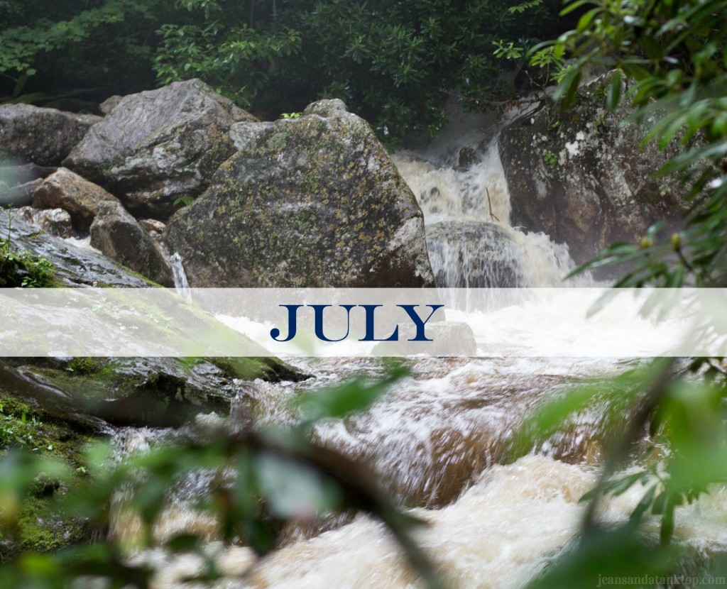 July Skinny-Dip-Falls-Blue Ridge Mountains