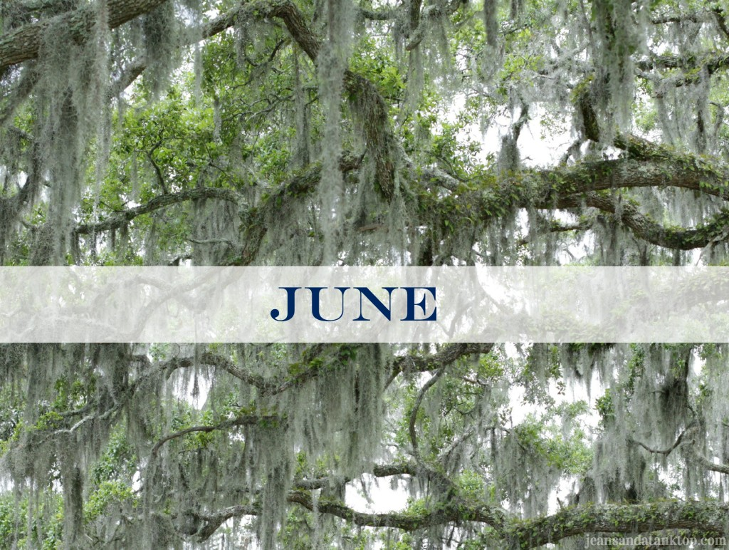 June Savannah Spanish Moss