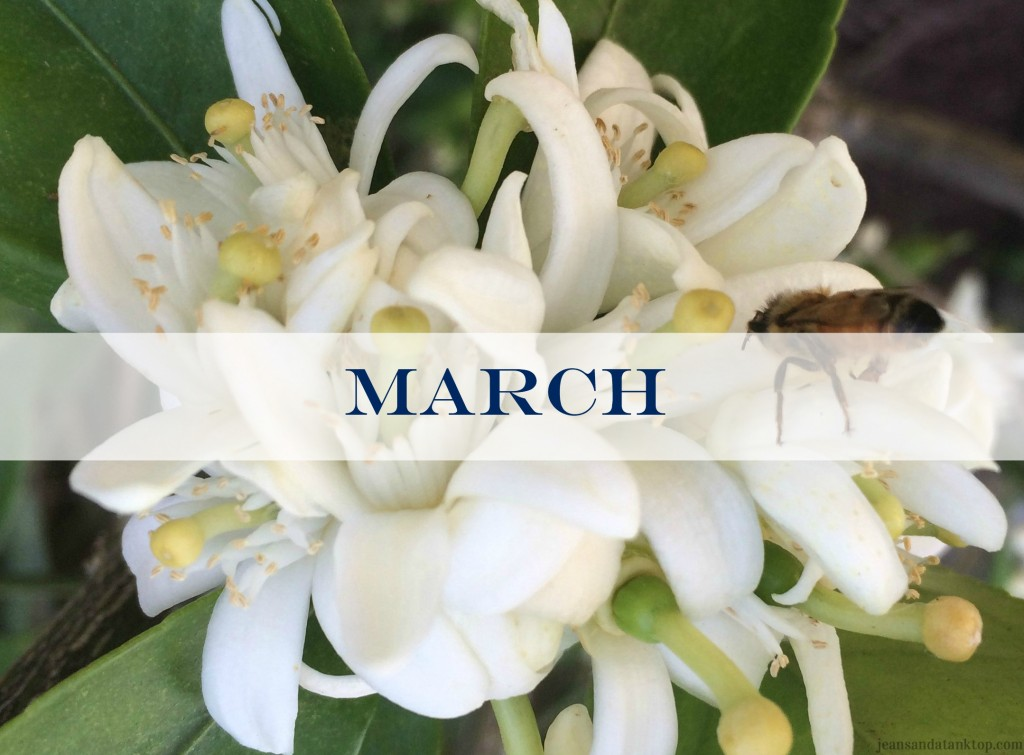 March Orange Blossom